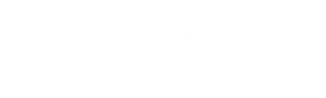 Dunraven School Logo white cutout