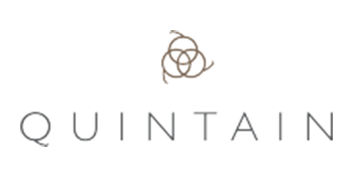 Quintain Logo